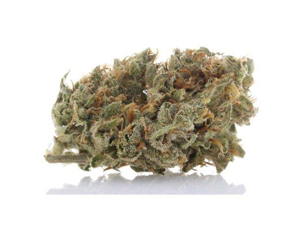 360 Cannabis Photography - 2