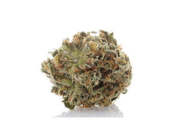360 Cannabis Photography - 3