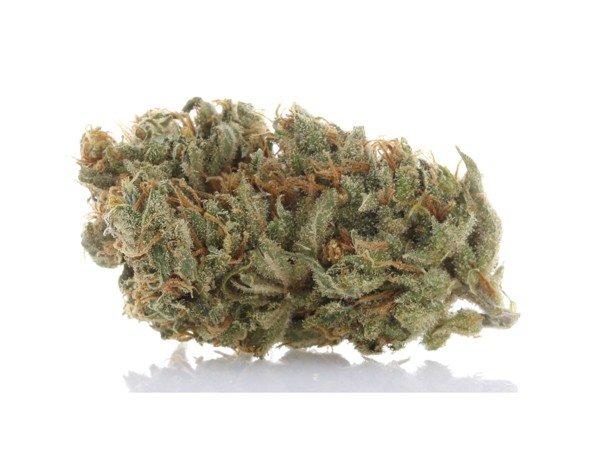 360 Cannabis Photography - 4
