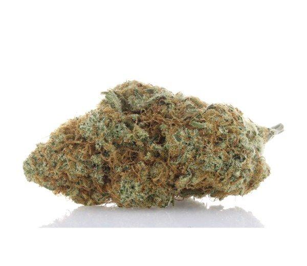 360 Cannabis Photography - 5