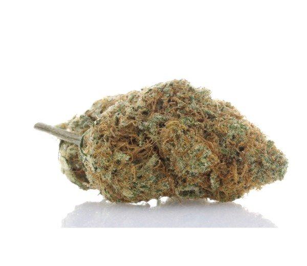 360 Cannabis Photography - 7