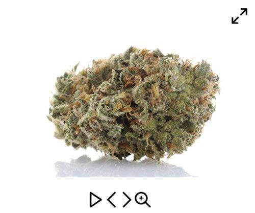 360 marijuana photography