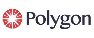 Polygon 360 degree diamond photography